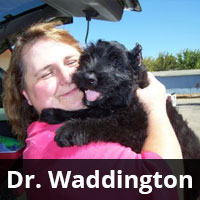 Dr. Waddington